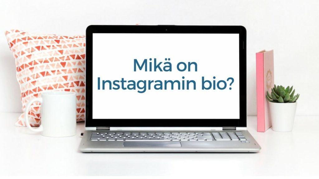 Mikä on Instagramin bio?